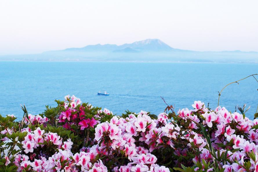 「つつじと大山」リート(島根県)